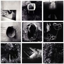 """Tamsen Wojtanowski, Soma (series), 57"""" x 57"""", 2012"""