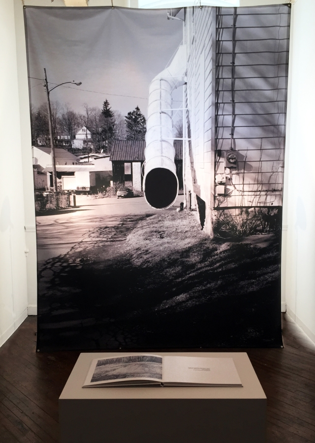 "Site. 2015. Archival Digital Print on Poly Poplin Fabric Backdrop. 7' 9"" x 10' 6""."